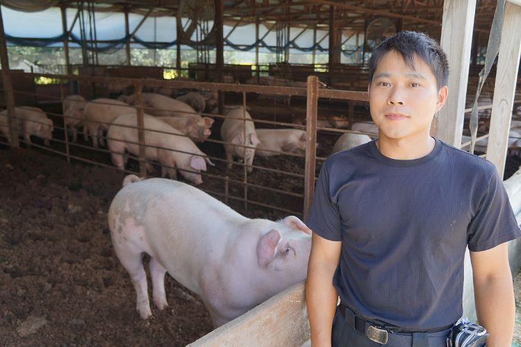 画像:むつみ豚